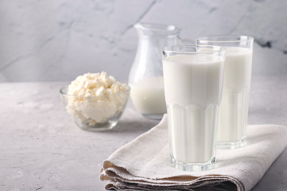 Kefir or Ayran fermented drink in a glasses and jug, as well as cottage cheese in a bowl on light gray background, Copy space, Closeup