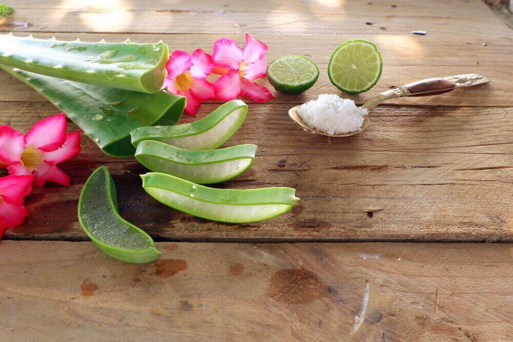 Aloe vera kvety, limetka a soľ