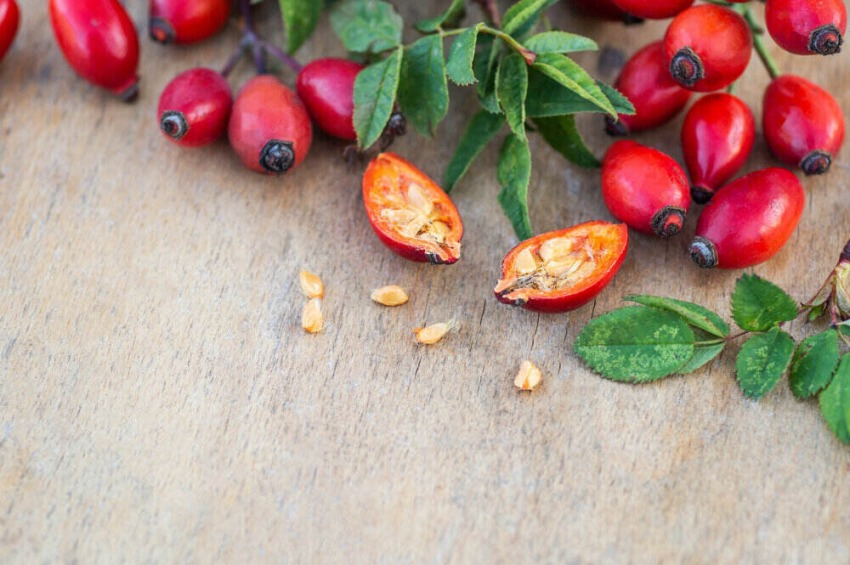 rozpolený plod šípky