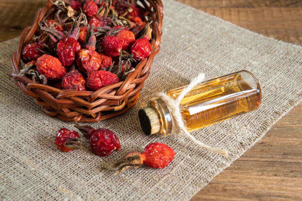 šípkový olej zo sušených šípkových plodov
