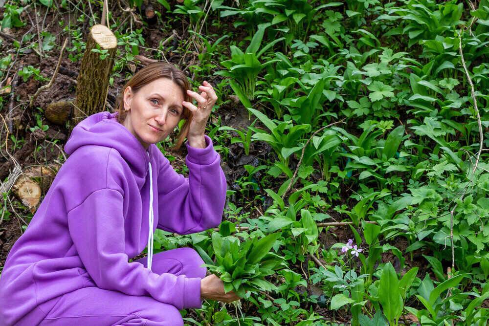 žena vo fialovom komplete zbiera medvedí cesnak v lese